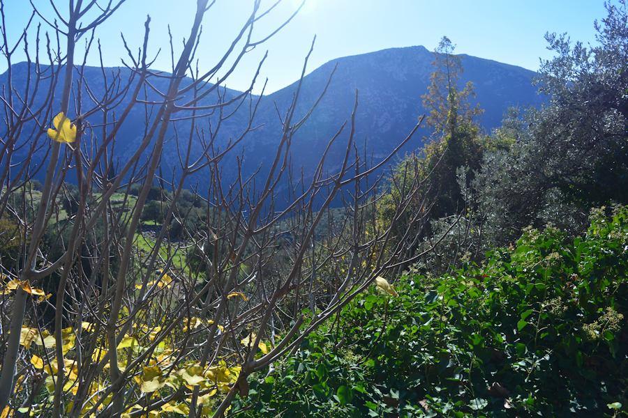 Delphi, landscape