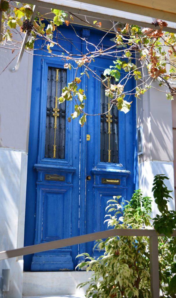 Vine Door in Greece